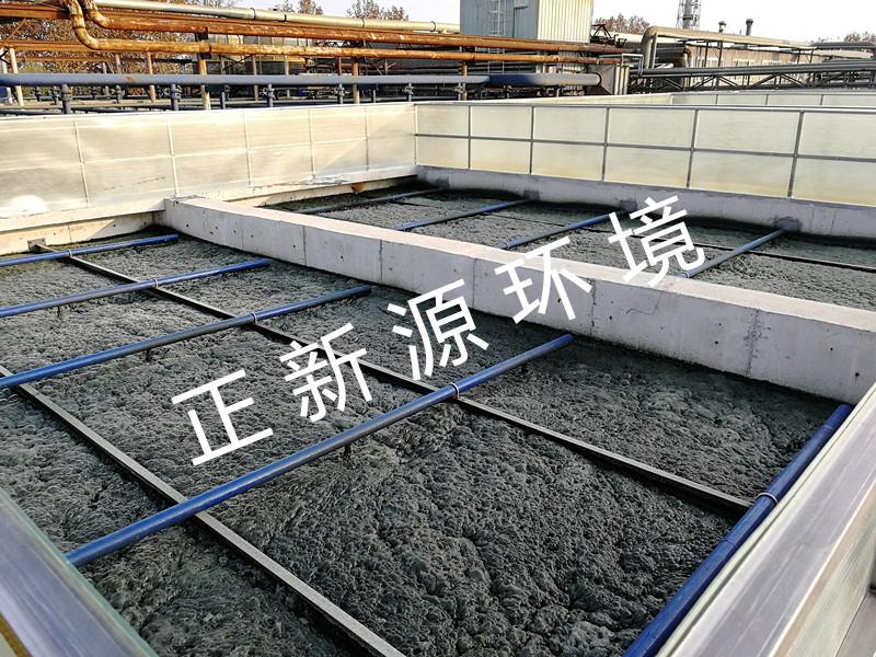 ZW曝气器-山东印染废水