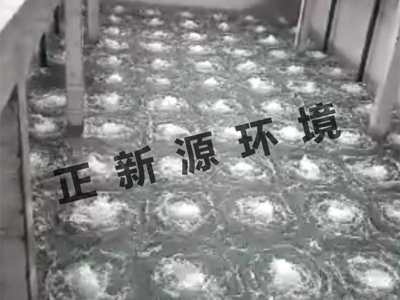 ZW曝气器-山西化工废水